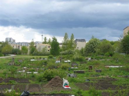 kumpulan viljelypalstoja 2004